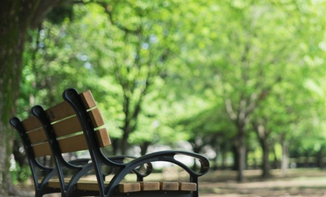 Why Are Public Parks Important?