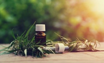 Debunking Common Misconceptions About CBD